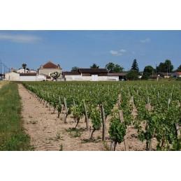 Bordeaux Clairet Château...