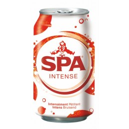 Spa Intense (24 x 33cl...