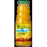Caraibos Ananas 1L