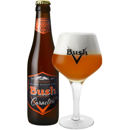 Bush Ambrée (Casier de 24 x...