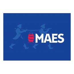 Maes pils (Fût de 50L)